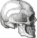 تطور مفهوم الطب عبر العصور